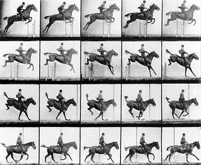 Black Horse Photograph - Man And Horse Jumping by Eadweard Muybridge