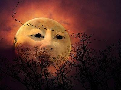 Wall Art - Photograph - Man In The Moon by Shannon Story