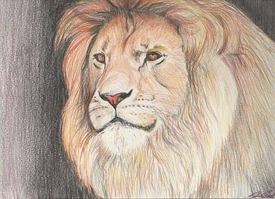 African Big Cats Drawing - Man Of His Pride by Joanna Aud