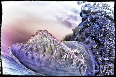 Digital Art - Man Of War by Georgianne Giese