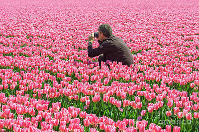 Photograph - Man Photographing Tulips by Patricia Hofmeester