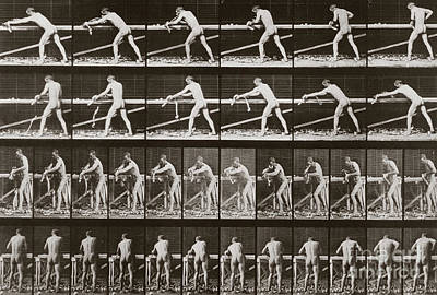 1887 Photograph - Man Planing Wood, Plate 379 From Animal Locomotion, 1887 by Eadweard Muybridge