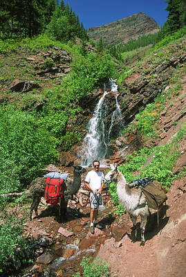 Llama Photograph - Man Posing With Two Llamas Mountain Waterfall by Jerry Voss