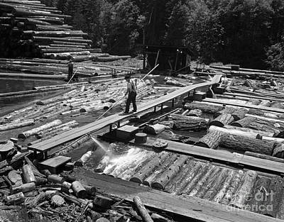 Man Pushing Logs In Lumber Mill Pond Art Print by H. Armstrong Roberts/ClassicStock