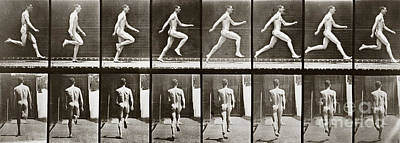 1887 Photograph - Man Running, Plate 65 From Animal Locomotion, 1887 by Eadweard Muybridge