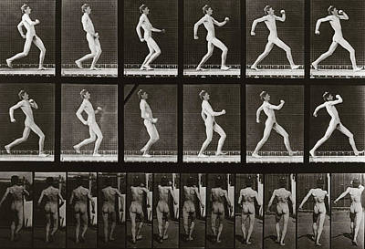 1887 Photograph - Man Running, Plate 7 From Animal Locomotion, 1887 by Eadweard Muybridge