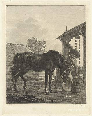 Man Shows A Horse Drinking From A Bucket Art Print by Celestial Images