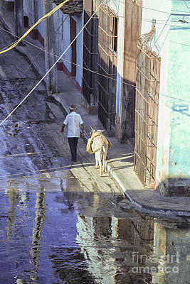 Photograph - Man With Donkey On Street Cuba by Patricia Hofmeester