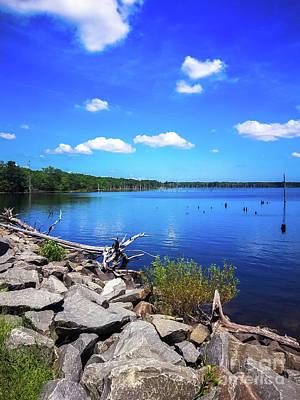 Photograph - Manasquan Reservoir  by Colleen Kammerer