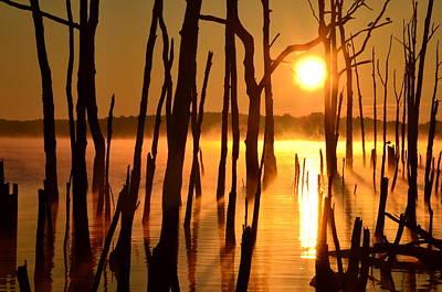 Manasquan Reservoir Sunrise Art Print by Bob Cuthbert