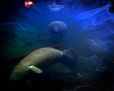 Digital Art - Manatee Fog by Sheri McLeroy