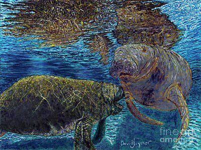 Painting - Manatee Motherhood by David Joyner
