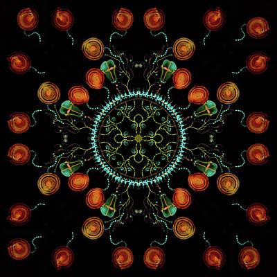Mandala - 0006 - Floating Free Print by Wetdryvac Net