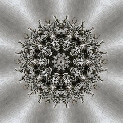 Anne Geddes - Mandala #17A by Listen LeeMarie