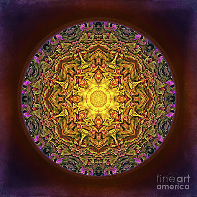 Digital Art - Mandala - Evening Sun by Gabriele Pomykaj