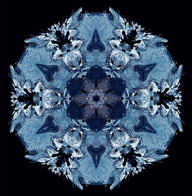 Photograph - Mandala Ice by Nancy Griswold