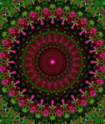 Adorable Digital Art - Mandala In Pink Red And Green Tones by Jaroslaw Blaminsky