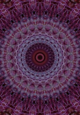 Photograph - Mandala In Pink,violet And Purple Colors by Jaroslaw Blaminsky