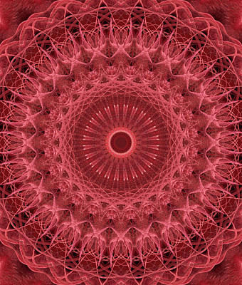 Photograph - Mandala In Red And Pink Colors by Jaroslaw Blaminsky