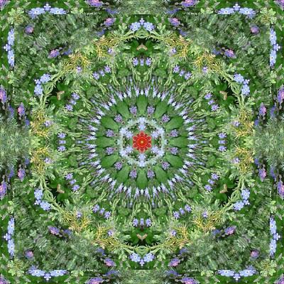 Mandala July 16 Art Print by Allen Rybo