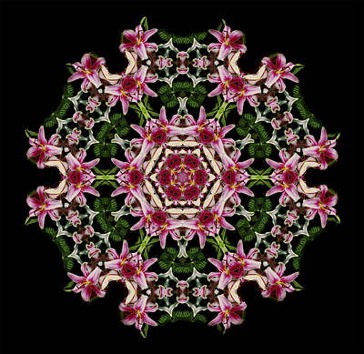 Photograph - Mandala Monadala  Lisa by Nancy Griswold