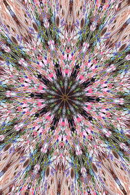 Photograph - Mandala Of Cherry Blossom by Wendy Le Ber