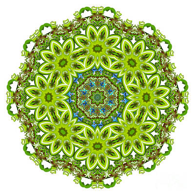 Digital Art - Mandala - Revival-2201-01gb by Variance Collections