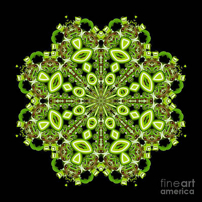 Digital Art - mandala - Revival-2201- 02gb by Variance Collections