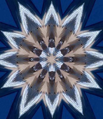 Photograph - Mandala Sea Star by Nancy Griswold