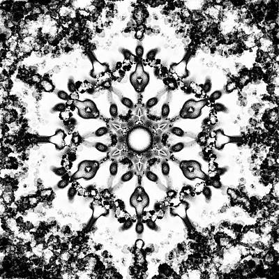 Digital Art - Mandala Silver 1 by Patricia Lintner