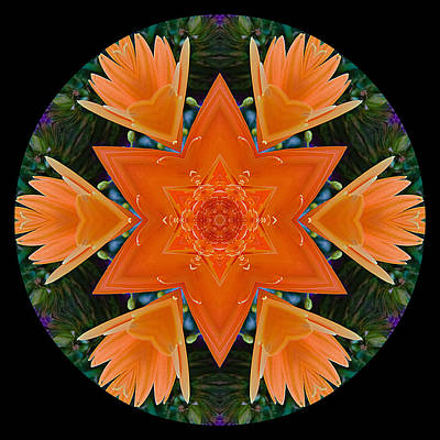 Photograph - Mandala Star by Stephanie Maatta Smith