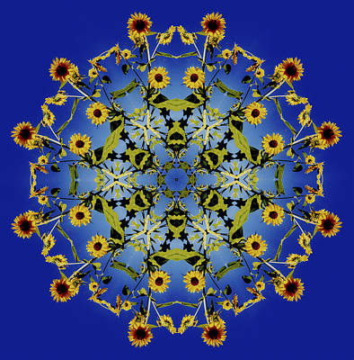 Digital Art - Mandala Sunflower by Nancy Griswold