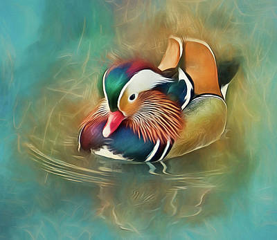 Photograph - Mandarin Duck by Brian Tarr