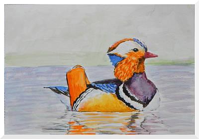 Ducks In Watercolor Painting - Mandarin Duck Male by Anwar Sahib
