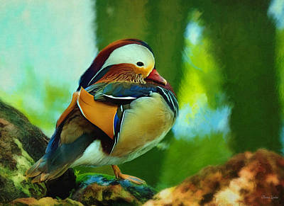 Photograph - Mandarin Duck Perching by Anna Louise