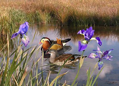 Mandarin Ducks And Wild Iris Art Print