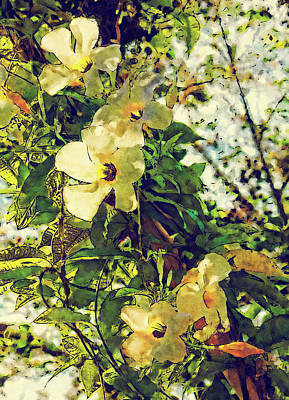 Photograph - Mandevilla In The Sunlight by HH Photography of Florida