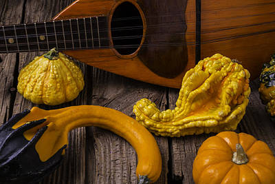 Hand Made Photograph - Mandolin And Gourds by Garry Gay