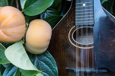 Photograph - Mandolin And Persimmon by Mick Anderson