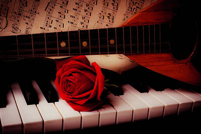 Piano Photograph - Mandolin And Rose by Garry Gay