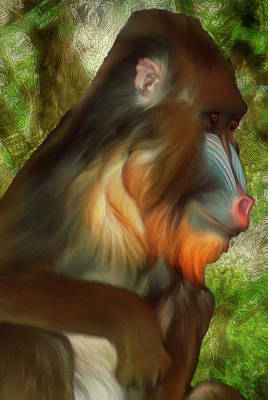 Darwin Painting - Mandrill 2 by Jack Zulli
