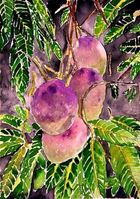 Mango Drawing - Mango Tree Fruit by Derek Mccrea