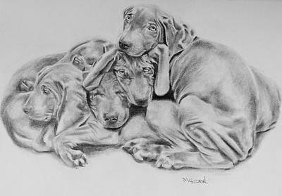 Drawing - Mango's Pups by Sandra Muirhead