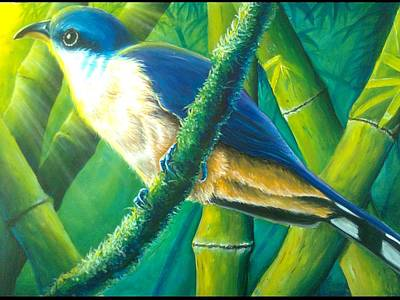 Mangrove Forest Painting - Mangrove Cuckoo by Ross Daniel