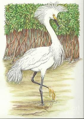 Mangrove Fishin' Art Print by Sue Bonnar