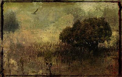 Mangrove Art Print by Margaret Hormann Bfa