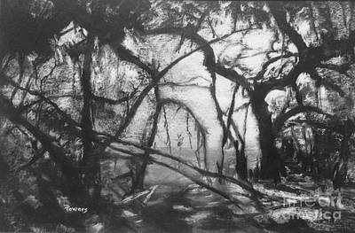 Drawing - Mangroves By Moonlight by Mary Lynne Powers