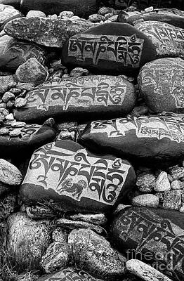 Photograph - Mani Stones - Lake Maasarovar Tibet by Craig Lovell