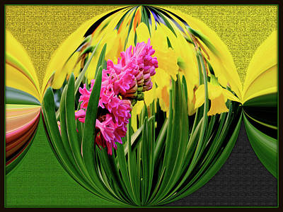 Digital Art - Manipulated Flower by Constance Lowery