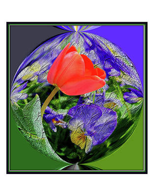 Digital Art - Manipulated Flower Two by Constance Lowery